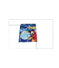 Disney-Fali dekoráció